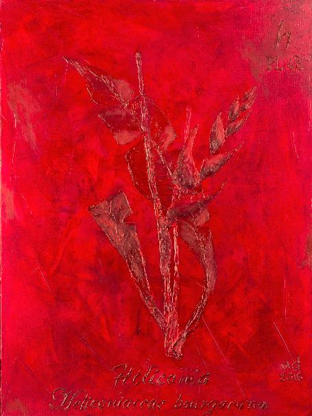 Heliconia Small by Alex Davis